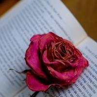 La lettura che trasforma